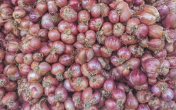 Red Onion. From Vegetables shop in market Royalty Free Stock Photography