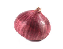 Red onion. On white background Royalty Free Stock Photos