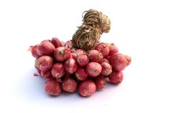 Red onion. Red onion is on white background Stock Photography