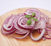 Red onions. Some fresh prepared red onions with basil Stock Photos