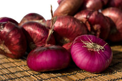 Free Red Onions Royalty Free Stock Images - 16319509