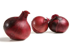 Red Onions. Three red onions on a white background. Focus on rear onions Stock Photos