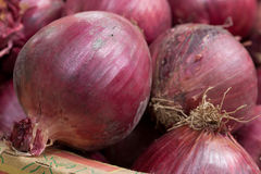 Red Onions. On display at a fruit and vegetable market Royalty Free Stock Photos