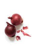 Red Onions. Two red onions with a white background stock photography