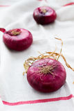 Red onions Stock Photos