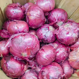 Red onions in basket on display Stock Image