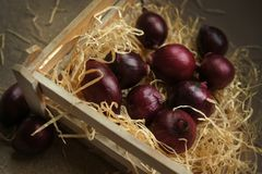 Red onions box straw hay stock photo