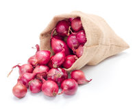 Red onions in burlap sack Stock Images