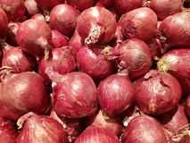 Red onions Royalty Free Stock Photos