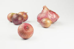 Red Onions Royalty Free Stock Photo