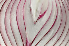 Red onions, cut Stock Images