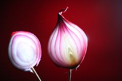 Red onions cutted in half Stock Images