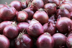 Red onions. A detailed view of some red onions, at the market, landscape cut Stock Photography