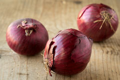 Red onions Royalty Free Stock Image