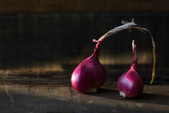 Red onions. Fresh red onions on wood Royalty Free Stock Image