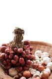 Red onions and garlic Royalty Free Stock Photography