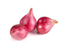 Red onions on isolated background Royalty Free Stock Image