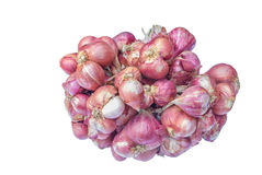 Red onions isolated Stock Photos