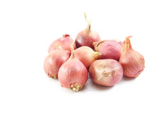 Red onions isolated on white background. Red onion and isolated on white background Stock Images