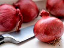Red onions and knife on a white table Royalty Free Stock Image