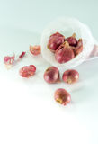 Red onions in mesh bag   on white background. Red onions in mesh bag and some on floor  on white background Stock Image