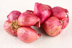 Red onions. Stock Photos