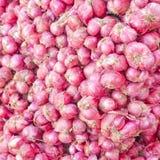 Red onions in plenty Stock Image