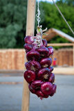 Red onions on a rope Stock Images