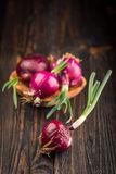 Red onions on rustic wood Stock Images
