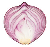 Red onions. Sliced red onions on white background royalty free stock photos