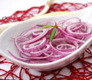 Red onions. Some fresh red onions rings in a bowl Stock Images