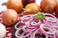 Red onions. Some fresh red onions rings on a plate Royalty Free Stock Photos