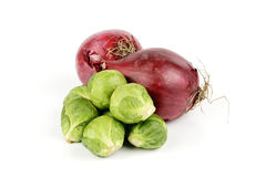 Red Onions and Sprouts Royalty Free Stock Image