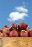 Red onions in a wooden crate Royalty Free Stock Images