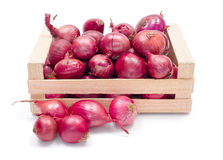 Red onions in wooden crate Royalty Free Stock Photos