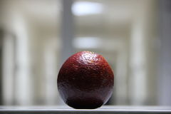 Red orange. On the background of the corridor Stock Image