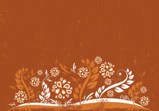 Red-Orange-Brown floral background Stock Image