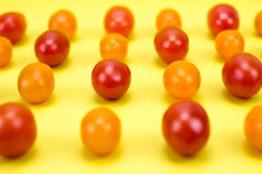 Red and orange cherry tomatoes. On yellow background Royalty Free Stock Photo