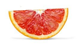 Red orange close up. On white background Stock Image