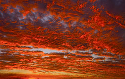 Red and orange fire in sunset sky. Stunning sunset clouds with vivid colours of reds and oranges. Perfect abstract background image. Photo taken at Lamberts Royalty Free Stock Image