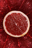 Red Orange grapefruit Cross Section Close Up Royalty Free Stock Image