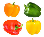 Red, orange, green and yellow bell peppers isolated on white Stock Photos
