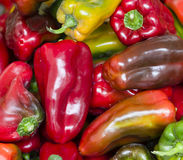 Variety of peppers Stock Photo