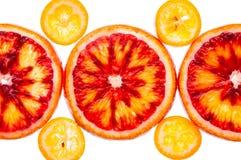 Red orange an kumquat Stock Image