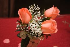 Red orange pink roses, gypsophila and green leaves on a glass cup Stock Photography