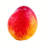Red orange plum on a white background Royalty Free Stock Photos