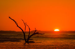 Red-Orange Setting Sun with Silhouette at Flood Tide Stock Image
