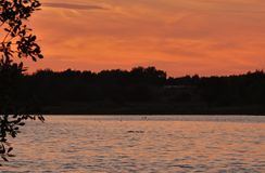 Red / orange sunset, evening landscape looking over a lake, photo taken in the UK. Red / orange sun setting sunset, evening landscape looking over a lake, photo royalty free stock photo