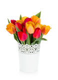 Red and orange tulips in flowerpot Stock Photos