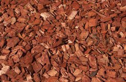 Red and orange wood chips texture. Stock Photography